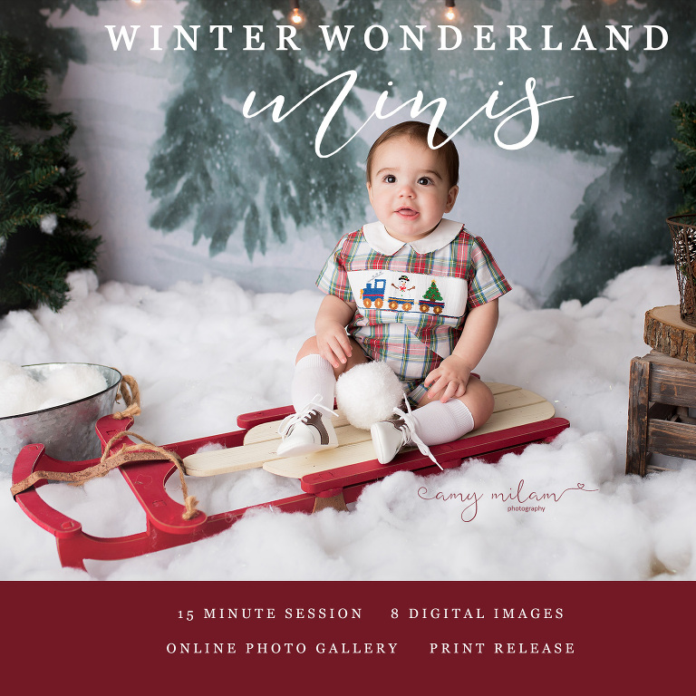 Christmas Mini Sessions.2018 Christmas Mini Sessions